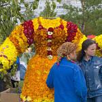 Накануне праздника цветов, Набережные Челны